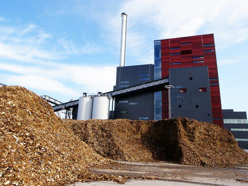 Digital transformation for Biomass Boilers – unlock effectiveness (anglų k.)